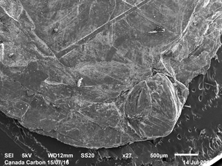 SEM Images Provided by Third Party of Thermally Upgraded Material